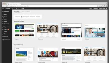 Работа с темами WordPress