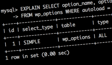 Отладка SQL-запросов в WordPress