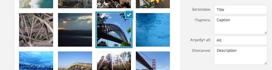 Атрибуты изображений в WordPress
