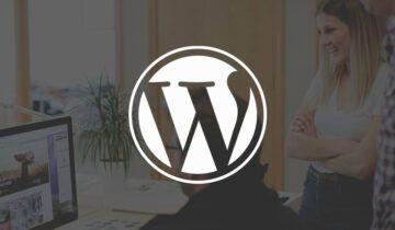Создание бизнеса на основе WordPress