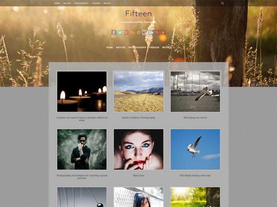 Тема для WordPress Fifteen