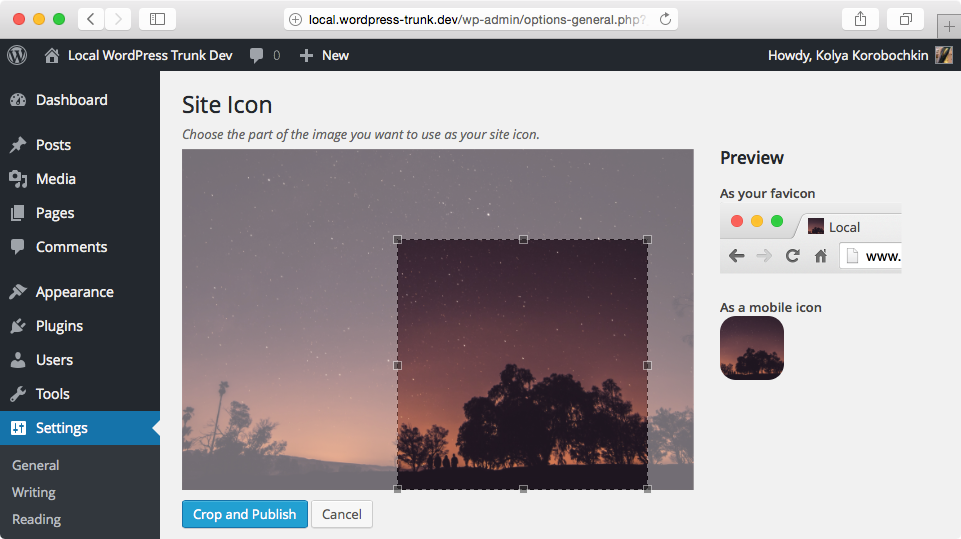 Управление favicon в WordPress 4.3