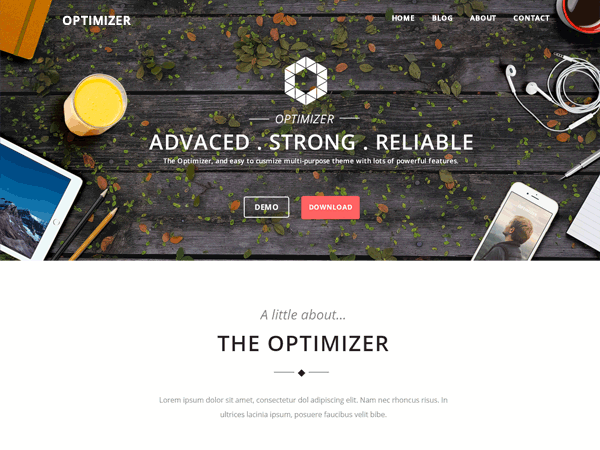 Тема Optimizer для WordPress