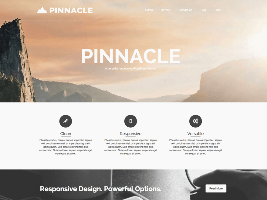 Тема с плоским дизайном Pinnacle