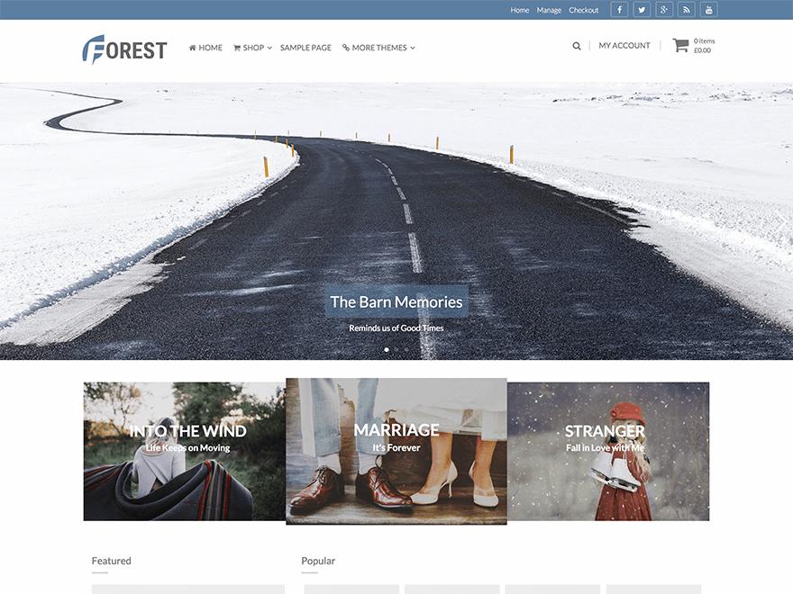 Тема для WordPress Forest