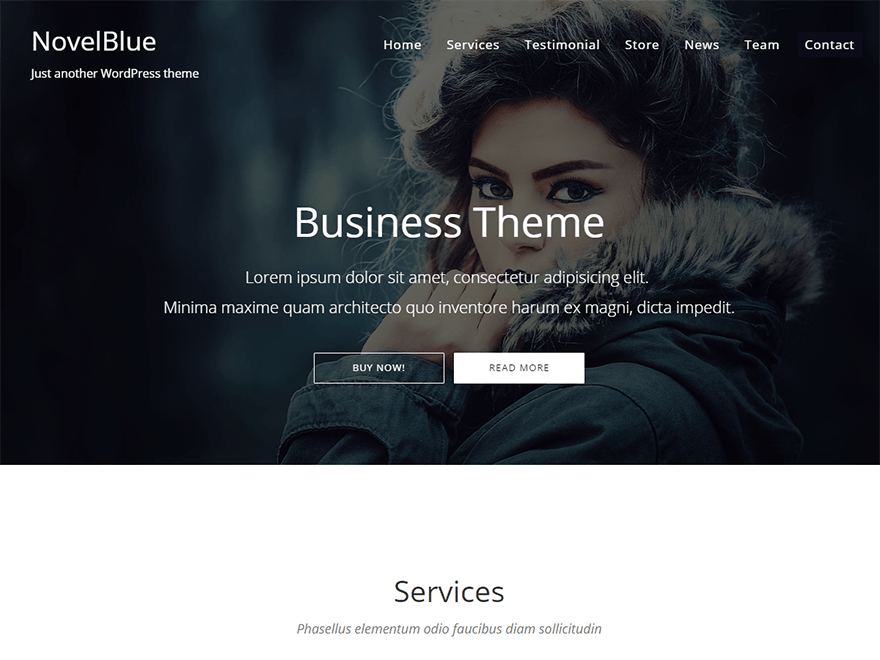 Тема для WordPress NovelBlue
