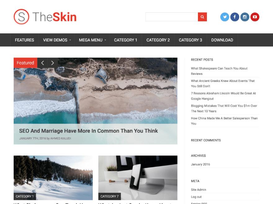 Многофункциональная тема The Skin